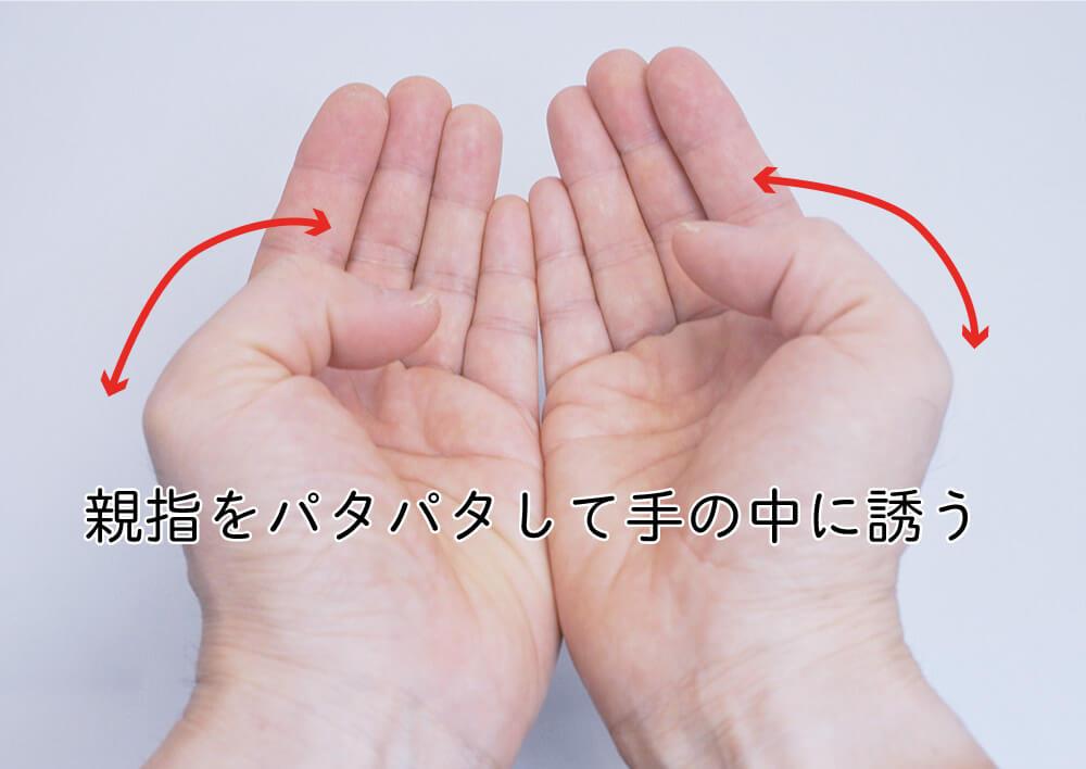 両手を開いてくっつけ、親指を内向きにパタパタして呼ぶ