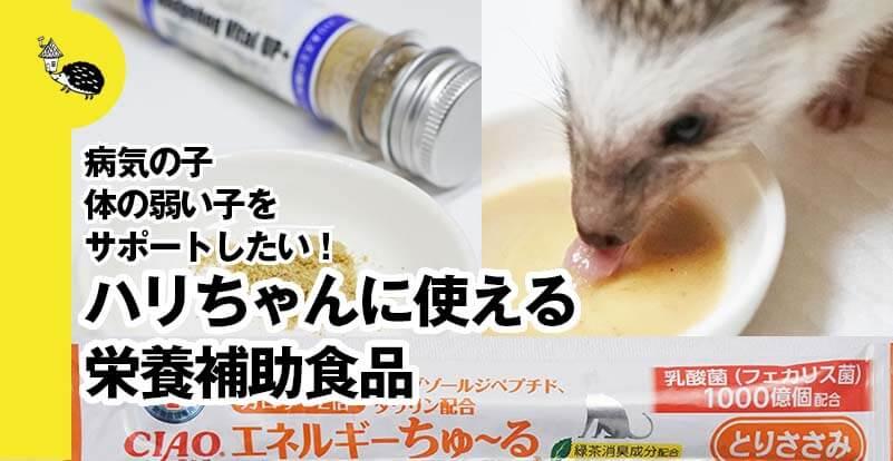 ハリネズミに使える栄養補助食品は?病気の子、体の弱い子をサポートしたい!